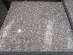 最も熱い中国 60X60 ピーチレッドポリッシュド御影石 G687