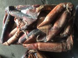 100-300 grammo Black Squid Meal Frozen Squid da vendere