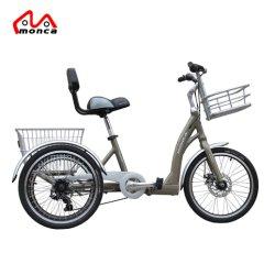 Ciao-Dieci triciclo della bicicletta del triciclo E delle rotelle dell'acciaio 3