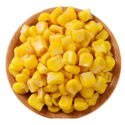 الذرة الحلوة المعلبة من المواد الطازجة
