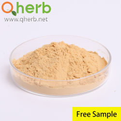 Precio a granel Extracto Wolfberry chino con una muestra gratis