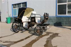 高貴な旅行展覧会のマラソンの結婚式の馬の馬車馬キャリッジ
