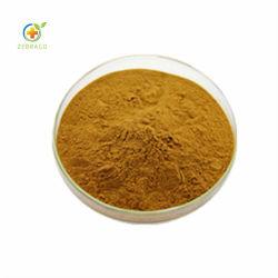 Alimentation Zebrago haute pureté extrait de la graine de lin avec 60 % lignanes de lin