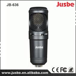 Microphone sonore de choeur de système de son \ professionnel d'enregistrement \ karaoke