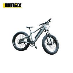 2021 High Power Fast Speed Elektro Motorrad Sport Bike