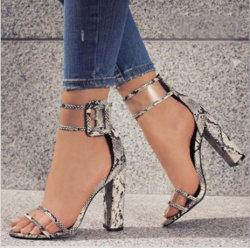 Novo e elegante Senhora 2019 Elevado Sapatos de salto, Senhoras nova alta moda Sapatos de salto, alta qualidade mulheres Bombas de Alta
