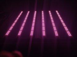 屋内成長する軽く完全なスペクトル720fr 650のワットLEDは医学の雑草のためのライトを育てる
