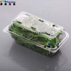 PLA Pet Alface Vegetais Ervas Aromáticas Clamshell Recipiente de embalagem
