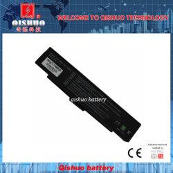 Batterie pour Sony / BPS2 de la batterie de haute qualité