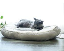 핑크 그레이 귀여운 고양이 쿠션 개 애완 동물 침대 소형 중형 대형 캣츠 애완견 용품 OEM PET 매트리스