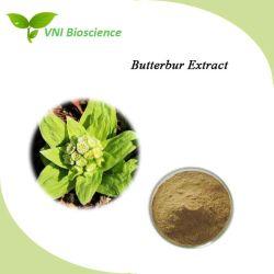 Certifiée ISO 10 : 1 20 : 1 Petasites japonicus extraire/Butterbur extrait avec fonction Antispasmodique