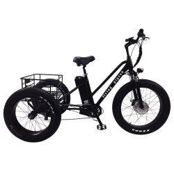Hot Sale Tricycle électrique de la batterie au lithium avec 4.0 Fat pneu (FP-ETRK1804)