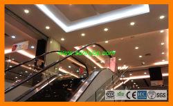 220Vは商業建物のための白い15W LEDの球根を暖める