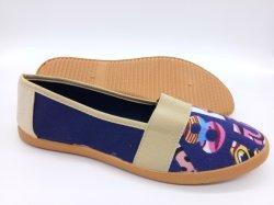 Низкая цена системы впрыска женщин Canvas обувь причинных обувь обувь (HP181020)