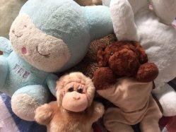 Vêtements usagés jouets du bébé pour la vente de vêtements usagés Racks