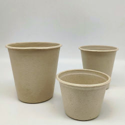 La cuvette de paille de blé Single-Use la canne à sucre tasse de pâte à papier imperméable 370ml