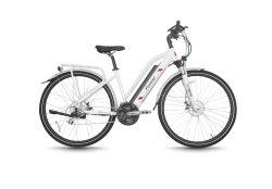 2018 Nouveau Modèle de ville vélo électrique (FR-BDM04Z)