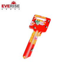 Hotsale の注文の設計様々な色の昇進のガレージのドアのブランクキー