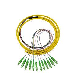Precio de la fabricación de Sc/APC conector óptico de fibra óptica SM 12 Corers Bunchy Coleta