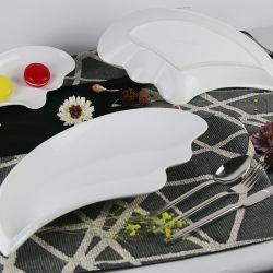 Nouvelles de haute qualité d'arrivée des plaques de porcelaine spéciales de conception élégante