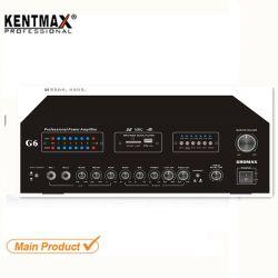 40W Profesional nido Salanganas Walet guitarra amplificador de audio estéreo de casa Tweeter 2