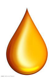 GMP 認定健康食品・介護精製 Natura Omega 3 シャーク肝臓 魚油