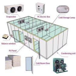 Congelatore di riserva della cella frigorifera del magazzino, frutta e verdure della memoria della stanza di conservazione frigorifera