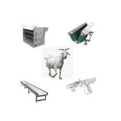 Moutons vivants de la chèvre de la machine de la chambre d'abattage abattage boucher de ligne de l'équipement