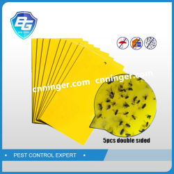 Placa amarela armadilha adesiva para Insetos Aphid
