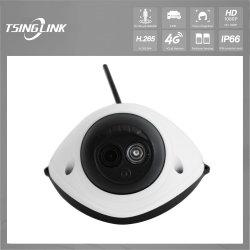 De goedkope HD Camera van het Netwerk van de Controle van de Veiligheid van het Huis van de Koepel van kabeltelevisie Poe