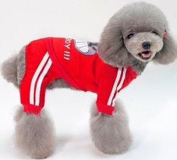 Ropa de mascota Camisetas de algodón punto Camisetas de suéter Pet Dog y.. Ropa Cat en Accesorios de ropa de Invierno (PCZW21023) Fabricantes Custom Quality Chaqueta de plumón