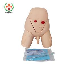SY-D04501 Good Quality Male Urethral Catheterization Model for Training(교육을 위한 SY-D04501 우수한 품질의 남성 요도 카테터 삽입 모델