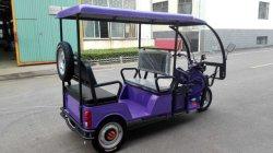 Fahrzeug- mit drei Rädernelektronischer Passagier-Selbstrikscha Tuk Tuk für Erwachsenen