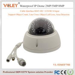 Безопасность CCTV водонепроницаемая камера для использования вне помещений IP-камера для ПК RoHS Ce