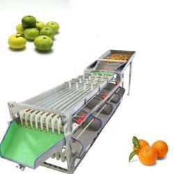 سعر المصنع التلقائي الخضار الفاكهة الفرز التفاح البطاطا الطماطم البرتقال غسالة بحجم الأفيوكادو أونون مع غسالة بحجم كبير