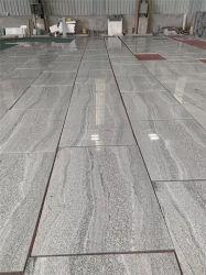 La Chine La pierre naturelle gris/noir/gris/poli perfectionné/flammé/brossé Wiscon blanc/sablé carreaux de granit pour les intérieurs/outdoor-de-chaussée/décoration murale/gaine optique
