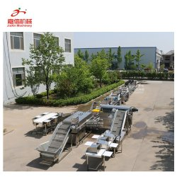 企業によって使用されるニンニクプロセス機械装置
