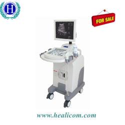 """Медицинского диагностического оборудования Hbw-10 плюс 15""""индикатор полностью цифровая передвижной ультразвукового сканера ."""