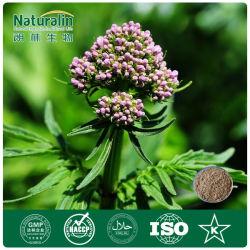 100% pur et naturel extrait de racine de valériane en poudre (acide valérique) avec une haute qualité