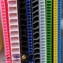 PP el Cartón Ondulado Lámina de plástico