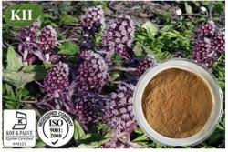Extrait de Butterbur; Petasites Hybridus; no CAS : 60102-37-6; 15 % Petasins