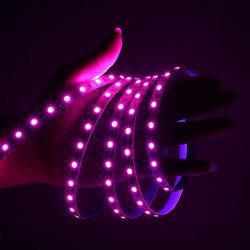 Fabrik Preis 12V Residencial flexible LED Ropelight 5m/Rolle 12W/M