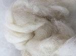 De Kammelingen van de wol