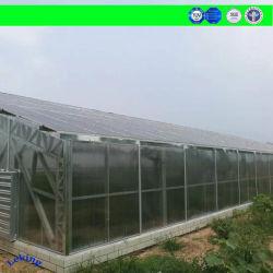 China Fabricante de efecto invernadero de vidrio, Hoja de PC/Película/Plástico/policarbonato, Multi Span/Túnel/Venlo, Incl. Sistema de hidroponía creciente para jardín/agricultura
