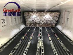 Overzeese/van de Lucht Vracht die van Dongguan aan de Logistiek van het Masker van het Gezicht van Saudi-Arabië verschepen