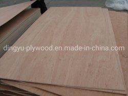 Mr/WBP Kleber Bingtangor Furnierholz für Aufbau mit Qualität