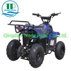 Système d'entraînement de chaîne de landau 110cc ATV