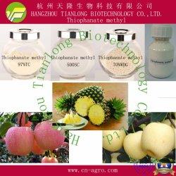 Thiophanate-méthyl (97%98%TC TC,, 50%WP, 70%WP, 70%WDG, 500SC)-fongicide