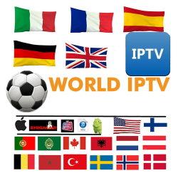 네덜란드 아랍 몰타에 대한 IPTV M3U 구독 1년 오스트리아 불가리아 루마니아 이집트 크로아티아 아프리카 IPTV 9600 채널 스마트 TV Android Apple TV