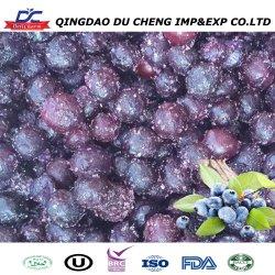 IQF органических замороженные черники свежие фрукты замороженные массовых черники